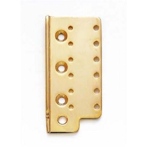 Brugplaat chroom vintage stijl tremolo goud
